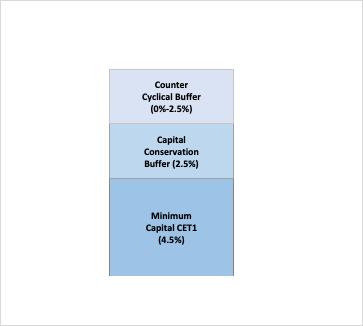 Figure 1. Capital Requirements